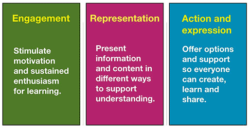 Multiple means of representation: Engagement - Stimulate motivation and sustained enthusiasm for learning; Representation - Present information and content in different ways to support understanding; Action and expression - Offer options and support so everyone can create, learn, and share.