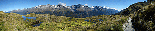 View from Hollyford Face