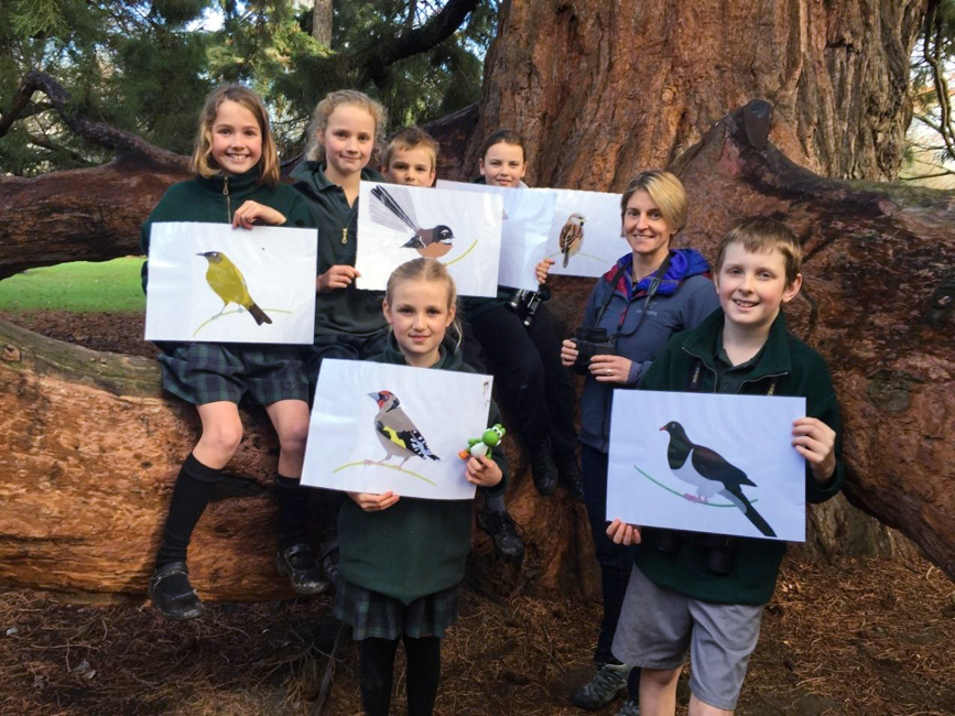 bird identification - citizen scientists
