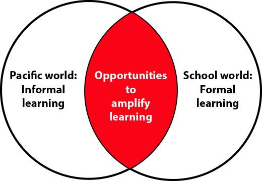 opportunities to amplify learning