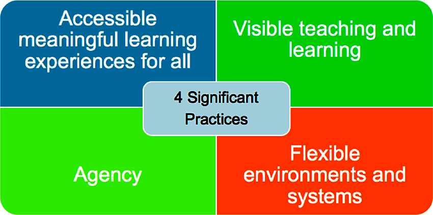 four significant practices in pedagogy