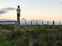 gazing-at-mt-taranaki-feature