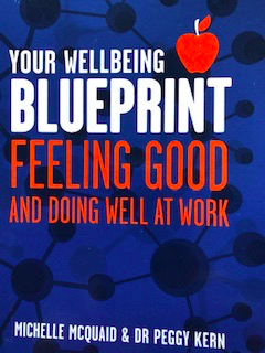 mcquaid-wellbeing-blueprint